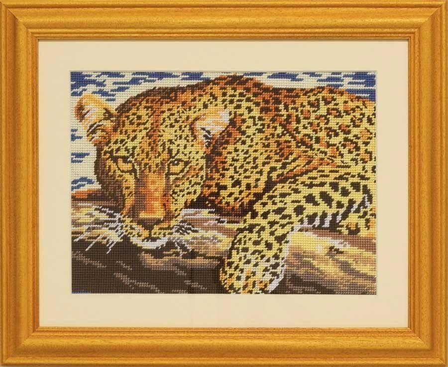 Leopard - OB004